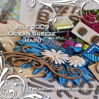 TM_july3kit2009_maindetail