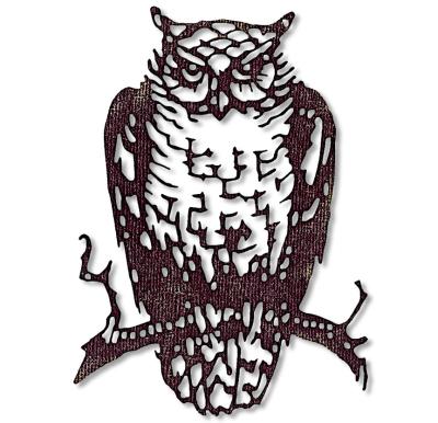 Ornate Owl 662380