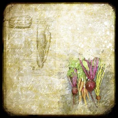 Garden Harvest 1